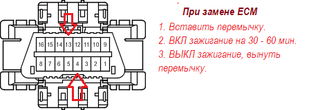 90980-11665.png